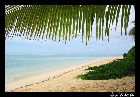 090209_beach2
