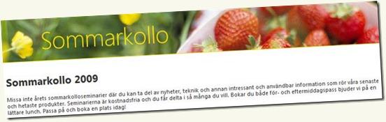 090514_microsoft_sommarkollo