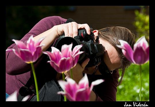 090524_macro_photography