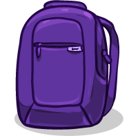 Incase Backpack