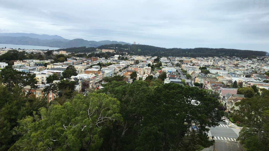 San Francisco View from Hamon Observation Tower