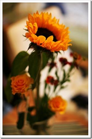 070823_blommor