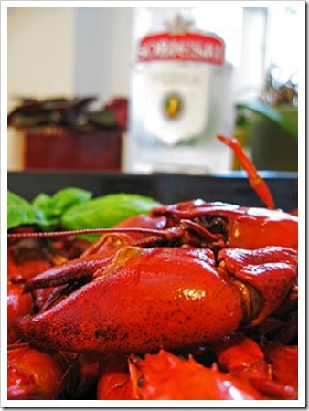 070810_crayfish